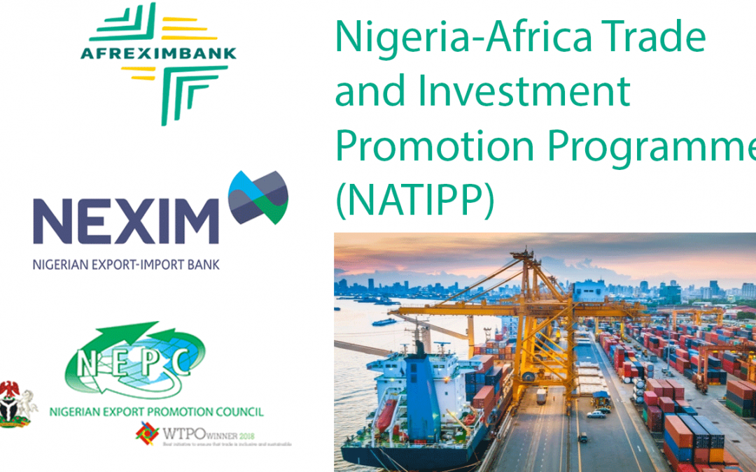 "Nigeria – Africa Trade and Investment Promotion Programme (""NATIPP"")"